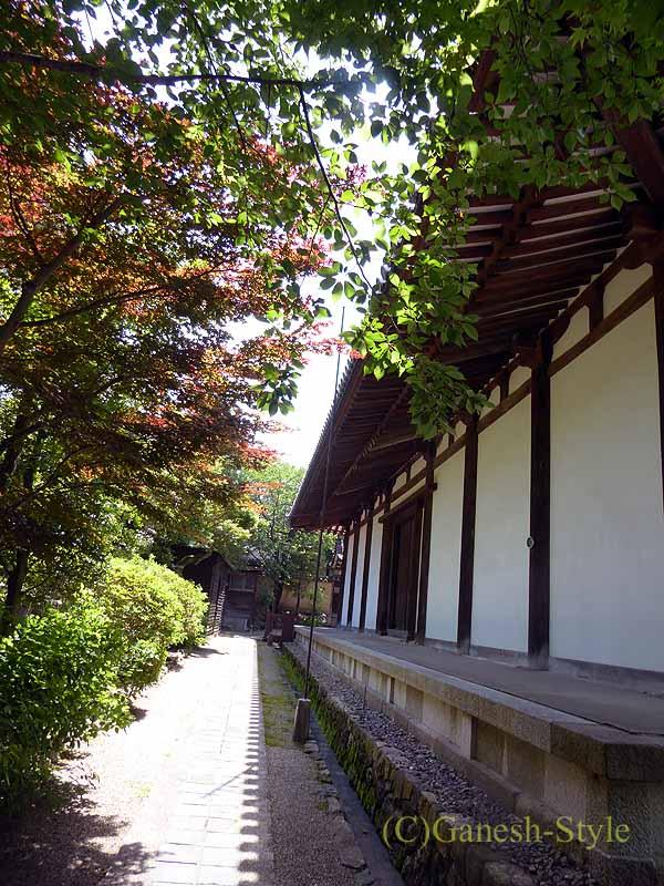 奈良市内にある747年創建の名刹、新薬師寺の本堂裏側