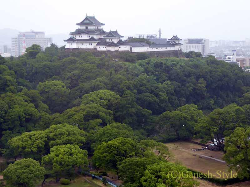 ダイワロイネットホテル和歌山の客室から見た和歌山城
