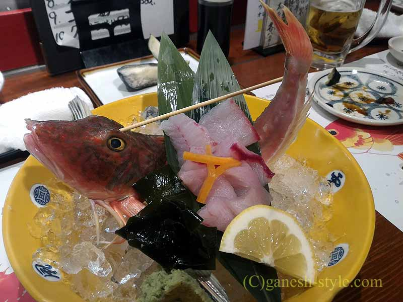 和歌山市内中心部にある海鮮居酒屋、いろは劇場のホウボウのお造り
